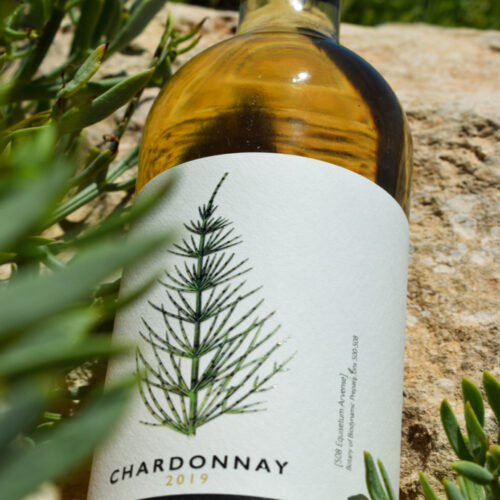 F. Schatz Chardonnay 2017. Vinos Utópicos