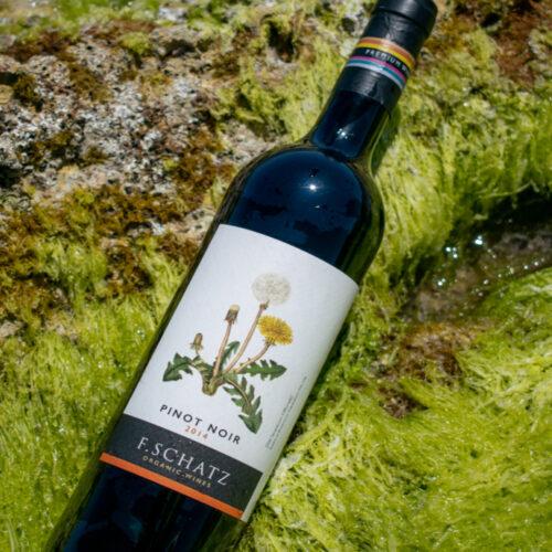 F. Schatz Pinot Noir 2013. Vinos Utópicos