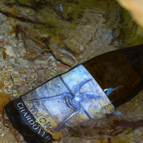 Vintopia Chardonnay 2019. Vinos Utópicos